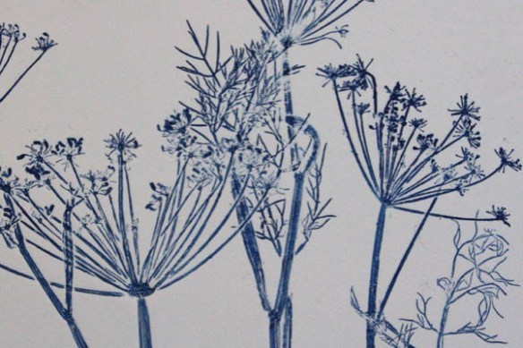 Botanical prints-blue fennel