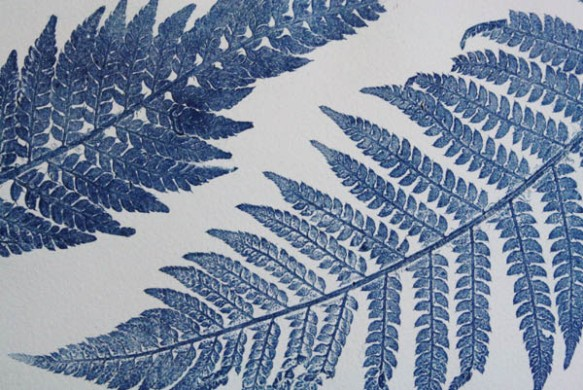 Blue ferns 4 detail